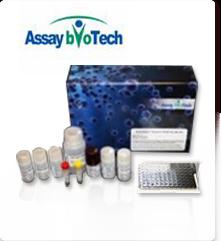 Assay BioTech