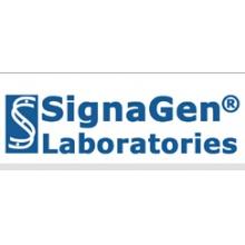 Signagen/RUTBC3 Adenovirus/Category: Ready to Package Adenovirus/