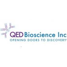 QED Bioscience/Recombinant Human CCL27 (CTACK)/50182P-50/1 Ea