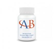Adventbio/5-Methyl-Cytidine-5'-Triphosphate, 100 mM Solution/20 mgs/13945-20mg