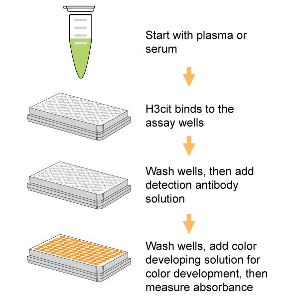 Epigentek/EpiQuik Circulating Histone H3 Citrullination ELISA Kit (Colorimetric)/P-3097-96/96 assays