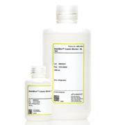 SurModics/StabilBlot™ Casein Blocker-5X, TBS/1 L/SB05-0125-01