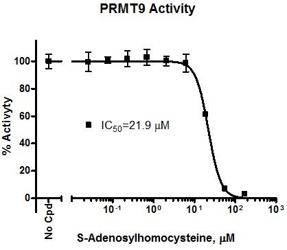 Usbio/377022  PRMT9, Homogeneous BioAssay™ Kit/377022/384Tests