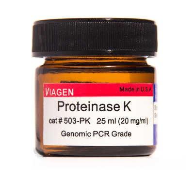 Viagen/Proteinase K solution 25ml (20mg/ml)/503-PK