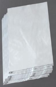 Wards Science/Science Kit Polyethylene Specimen Bags/470104-924