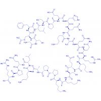 Bachem/(Ser(Ac)³)-Ghrelin (mouse, rat) trifluoroacetate salt/H-7638.0500/0.5 mg