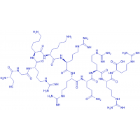 Bachem/(Cys⁴⁷)-HIV-1 tat Protein (47-57) trifluoroacetate salt/H-7512.0001/1 mg