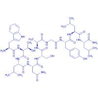 Bachem/Galanin (2-11) amide trifluoroacetate salt/H-7582.0500/0.5 mg