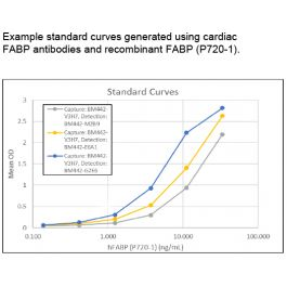 BBI Solutions/FABP Heart Mouse Monoclonal Antibody - Monoclonal Antibodies - (BM442-E6A1)//BM442-E6A1