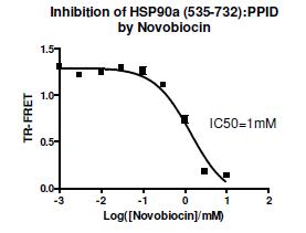 Bpsbioscience/HSP90α (C-Terminal Domain) TR-FRET Kit/50261/384 reactions
