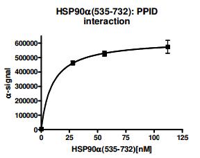 Bpsbioscience/HSP90α (C-Terminal) Inhibitor Screening Assay Kit/50317/384 reactions