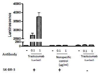 Bpsbioscience/ADCC Bioassay Effector Cell F variant (Low Affinity) - Jurkat Recombinant Cell Line/60540/2 vials