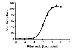 Bpsbioscience/ADCC Bioassay Effector Cell V variant (High Affinity) - Jurkat Recombinant Cell Line/60541/2 vials