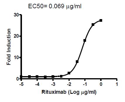 Bpsbioscience/ADCP Bioassay Effector Cell FcγRIIa (H variant) /NFAT Reporter-Jurkat/71273/2 vials