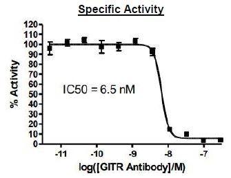 Bpsbioscience/Anti-GITR Antibody/79053-1/50 µg