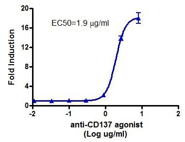 Bpsbioscience/Anti-CD137 Agonist Antibody/79097-1/50 μg
