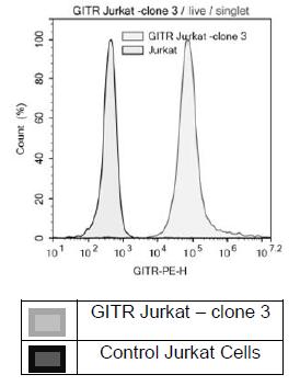 Bpsbioscience/Anti-GITR Antibody, PE-labeled/71295-1/50 μg
