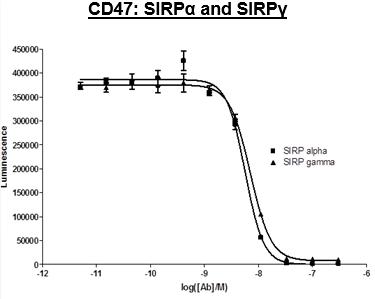 Bpsbioscience/Anti-CD47 Antagonist Antibody/79065-1/50 µg