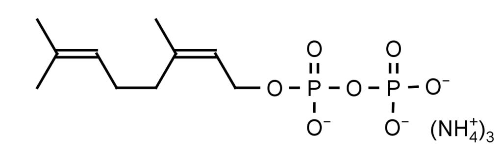 echelon-inc/Neryl Diphosphate (NPP)/1mg/I-0120-1mg