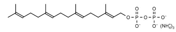 echelon-inc/Geranylgeranyl Diphosphate (GGPP)/1mg/I-0200-1mg