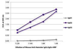 GeneTex/Mouse Anti-Armenian Hamster IgG2/IgG3 antibody [SB139e] (HRP)/GTX02568