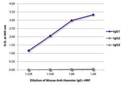 GeneTex/Mouse Anti-Armenian Hamster IgG1 antibody [SB139a] (HRP)/GTX02569