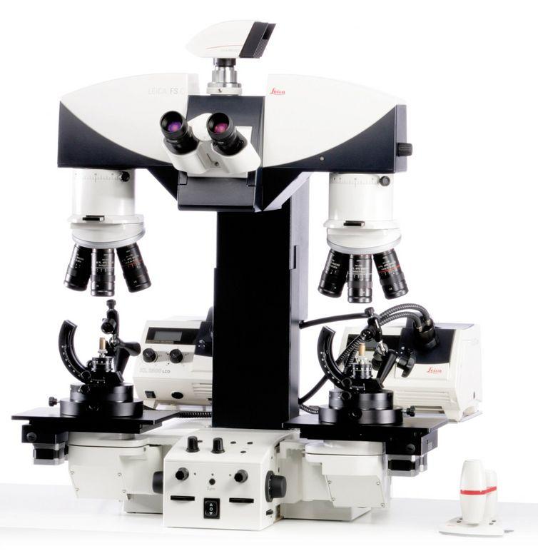 Leica/Leica FS C | Comparison Macroscope /Leica FS C | Comparison Macroscope/1 Ea