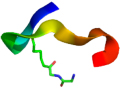 Lucerna/Diglycyl-Lysine Antibody, clone GX41 (1 mg)/30-1000/1000