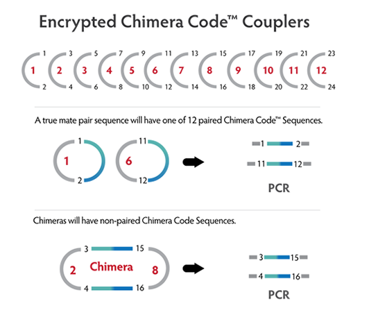 Chimera Code Sequence Prevents False Mates