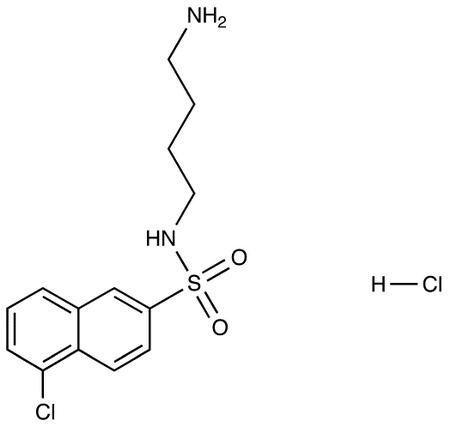 Medicalisotopes/N-(4-Aminobutyl)-5-Chloro-2-Naphthalenesulfonamide HCl/25 mg/6398