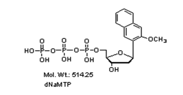 Mychem/dNaMTP/M-1013/5 µmole