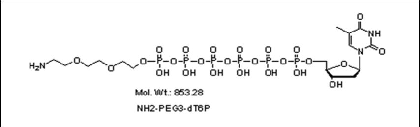 Mychem/Amino-PEG3-2\'-deoxythymidine-5\'-hexylphosphate/A-1019/1 µmole