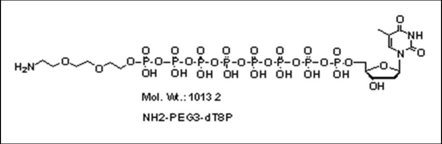Mychem/Amino-PEG3-2\'-deoxythymidine-5\'-octylphosphate/A-1020/100 nmole