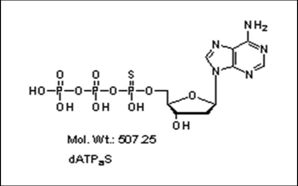 Mychem/α-thio-2\'-deoxyadenosine-5\'-triphosphate (Sp single isomer)/P-1002/10 µmole