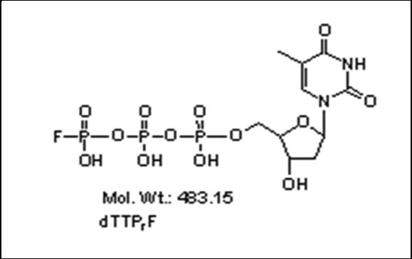 Mychem/γ-fluoro-2\'-Deoxythymidine-5\'-Triphosphate/P-1003/100 nmole