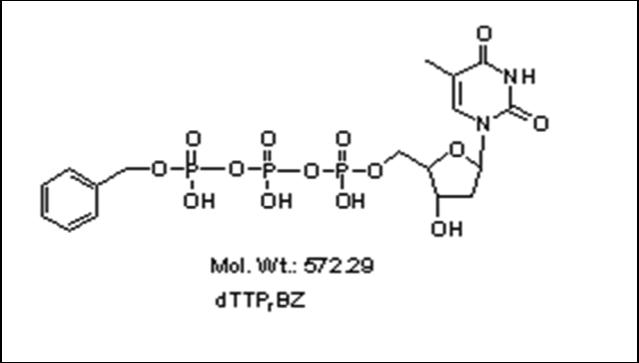 Mychem/γ-benzyl-2\'-Deoxythymidine-5\'-Triphosphate/P-1006/100 nmole