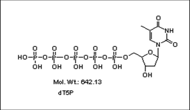 Mychem/2\'-Deoxythymidine-5\'-pentylphosphate/P-2002/250 nmole