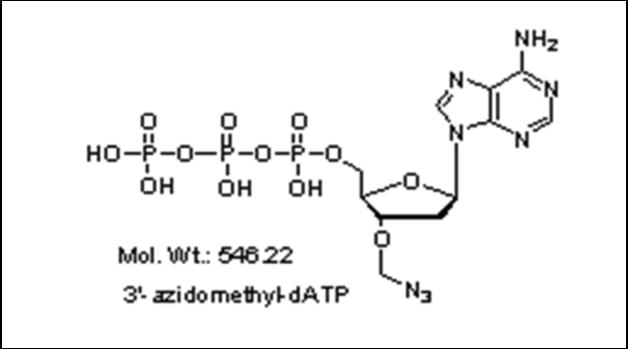 Mychem/3\'-azidomethyl-2\'-Deoxyadenosine-5\'-Triphosphate/S-1001/1 µmole