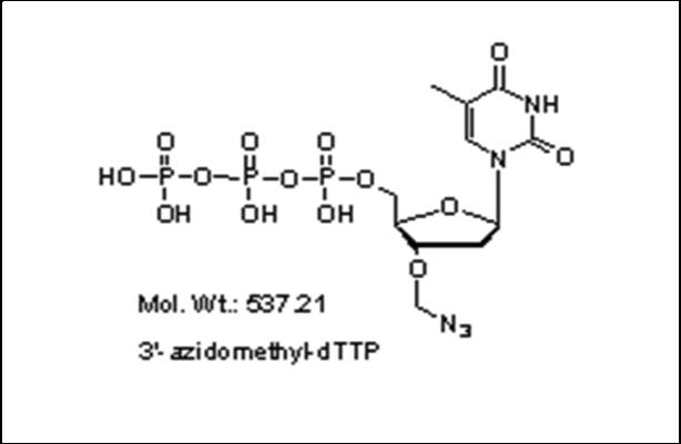 Mychem/3\'-azidomethyl-2\'-Deoxythymidine-5\'-Triphosphate/S-1003/10 µmole