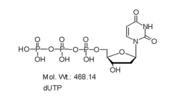 Mychem/2\'-deoxyuridine-5\'-Triphosphate/M-1005/50 µmole