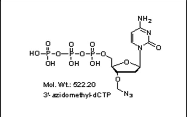 Mychem/3\'-azidomethyl-2\'-Deoxycytidine-5\'-Triphosphate/S-1004/1 µmole