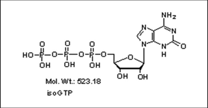 Mychem/Iso-Guanosine-5\'-Triphosphate/R-1007/10 µmole