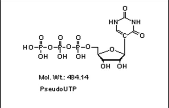 Mychem/Pseudo-uridine-5\'-triphosphate/R-1009/1 µmole