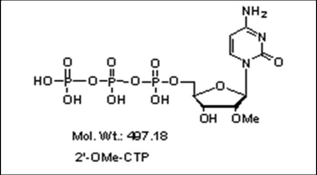 Mychem/2\'-O-Methylcytidine-5\'-Triphosphate/R-1014/10 µmole