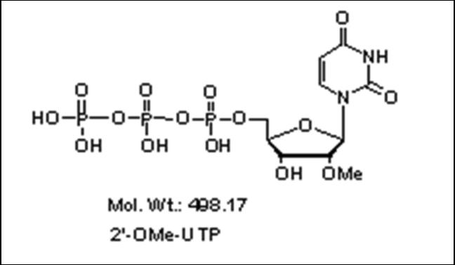 Mychem/2\'-O-Methyluridine-5\'-Triphosphate/R-1015/100 µmole
