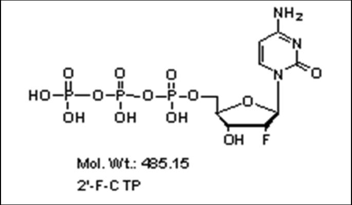 Mychem/2\'-Fluoro-2\'-deoxycytidine-5\'-Triphosphate/R-1018/10 µmole