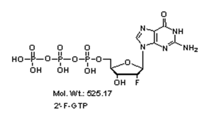 Mychem/2\'-Fluoro-2\'-deoxyguanosine-5\'-Triphosphate/R-1017/100 µmole