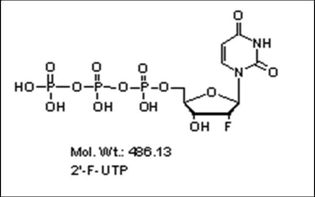 Mychem/2\'-Fluoro-2\'-deoxyuridine-5\'-Triphosphate/R-1019/10 µmole
