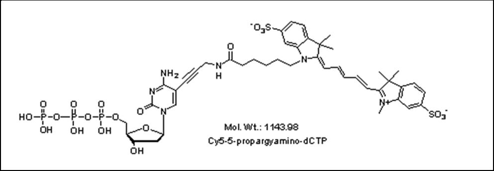 Mychem/Cy5-5-propargylamino-2\'-deoxycytidine-5\'-Triphosphate/D-1007/1 µmole
