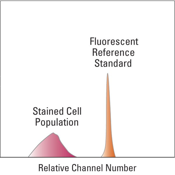 Polysciences/Fluorescein Reference Standard/5 ml/BLI891B-5